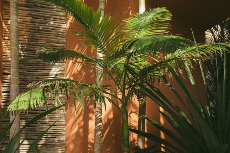 Innere Salobre Hotel Resort & Serenity Maspalomas
